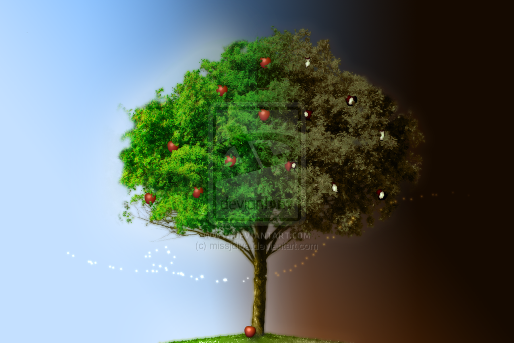 Image result for TREE OF KNOWLEDGE OF GOOD AND EVIL